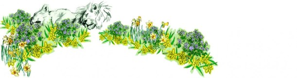 cropped-leeuwenbergh_voorjaar03_web.jpg