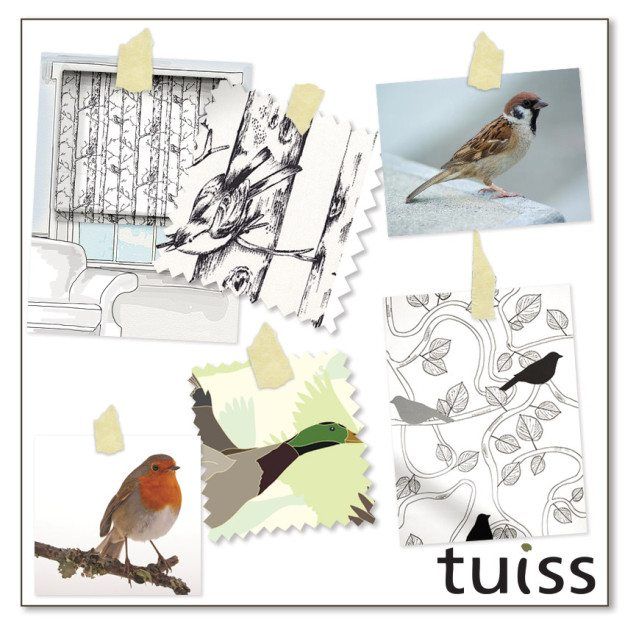 tuiss-trends-aug15-2