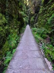 BASTEI - na szlaku do Amselfall