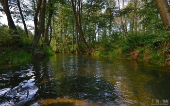 Lelów - spływ pontonowy Białką