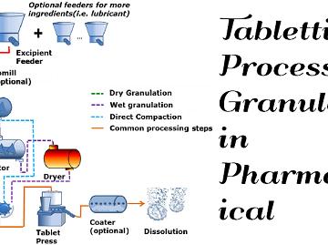 Tabletting Process Granulation
