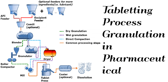 Tabletting Process Granulation