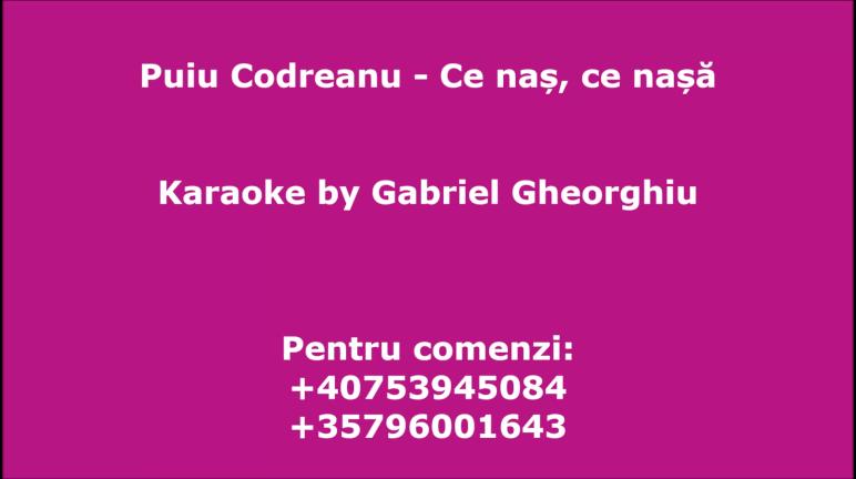 Ce nas, ce nasa – Puiu Codreanu –  Karaoke Negativ Demo by Gabriel Gheorghiu