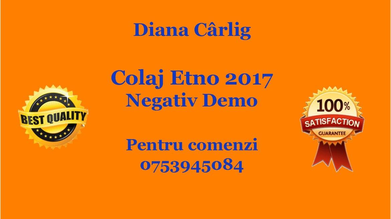 Colaj Etno 2017 – Diana Carlig