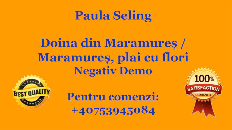 Doina din Maramures – Maramures, plai cu flori – Paula Seling