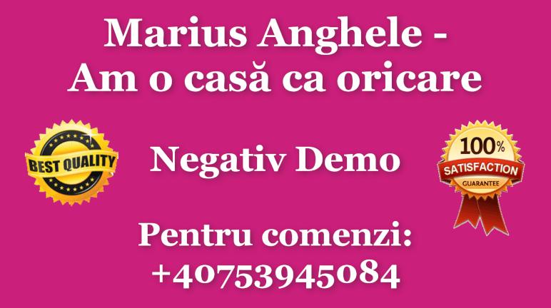 Am o casa ca oricare – Marius Anghele – Negativ Karaoke Demo