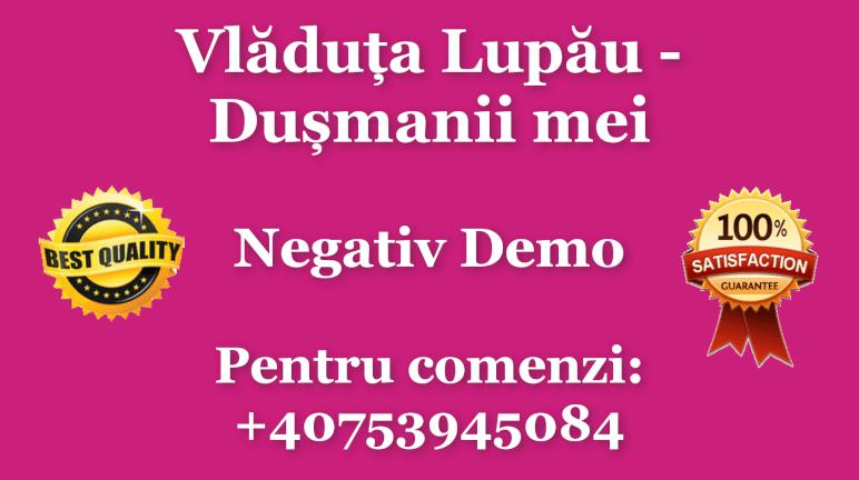 Dusmanii mei – Vladuta Lupau – Negativ Karaoke Demo