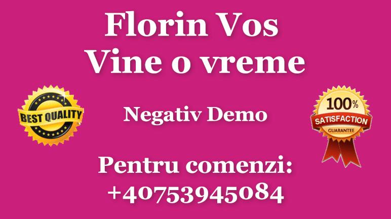 Vine o vreme – Florin Vos – Negativ Karaoke Demo