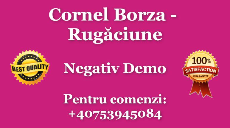 Rugaciune – Cornel Borza – Negativ Karaoke Demo