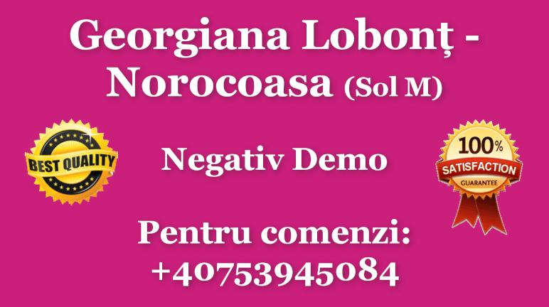 Norocoasa – Sol M – Georgiana Lobont – Negativ Karaoke Demo