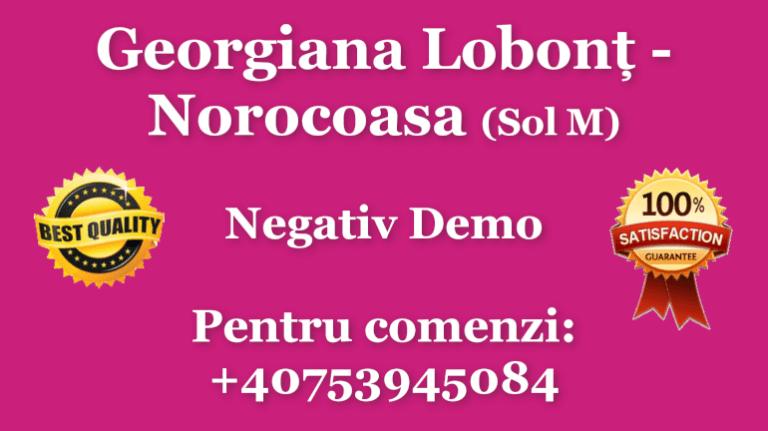 Georgiana Lobont Norocoasa Sol M