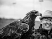 Touristen-Spaß mit Adlern
