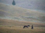 random Mongolia