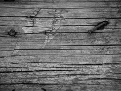 Holz VII
