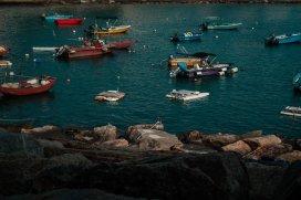 boaty boats
