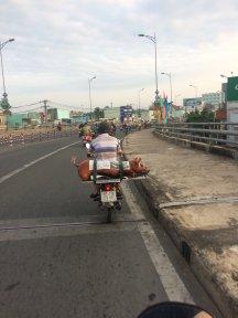 Mein Moped und mein Spanferkel