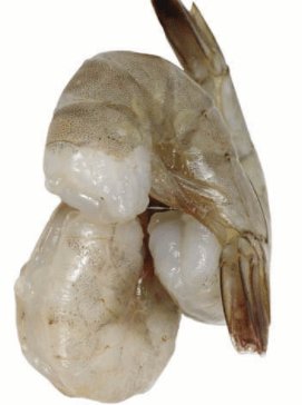 Shrimp-1_Tukwila ZaZu Online grocrery Store in Germany