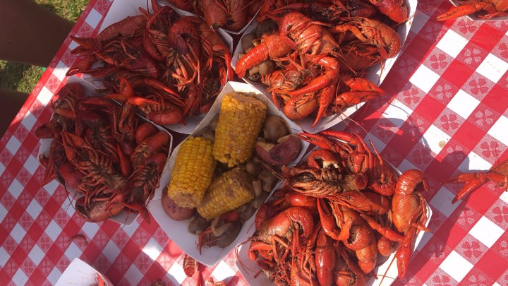 Crawfest: Everyone's Favorite Day of the Year