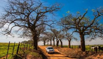 Belas paisagens fazem parte do roteiro Crédito: Cadu Rolim / Mitsubishi