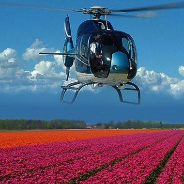 helikopter rondvluchten tulpenvelden amsterdam