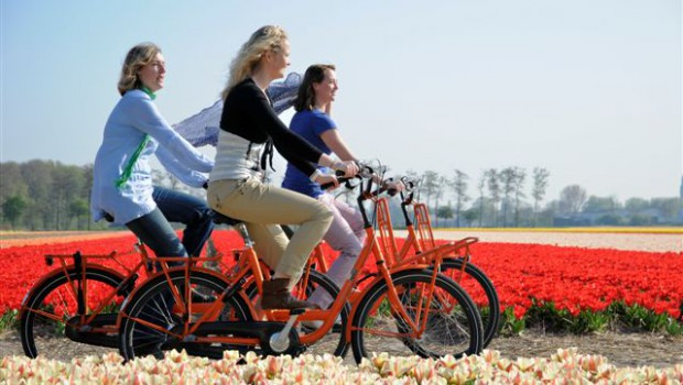 Bike tour along the tulip fields near Amsterdam