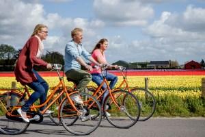 Rental bike Keukenhof