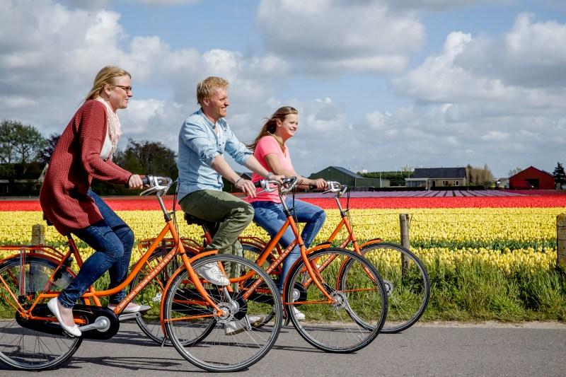 Cycle routes tulip fields Keukenhof