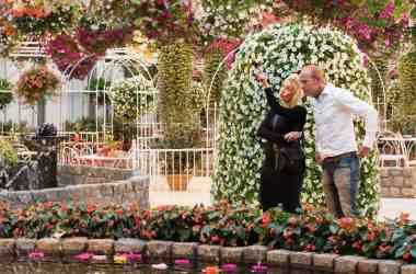 flower attractions when Keukenhof is closed