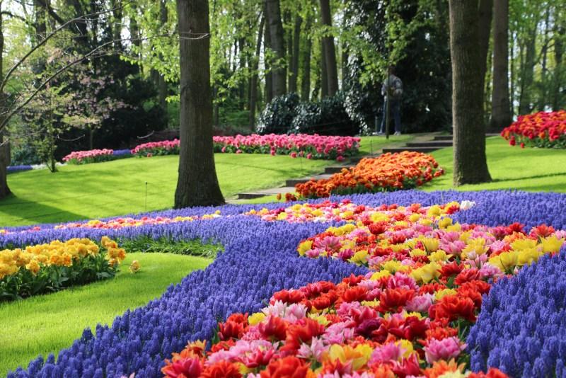 Keukenhof Gardens Amsterdam