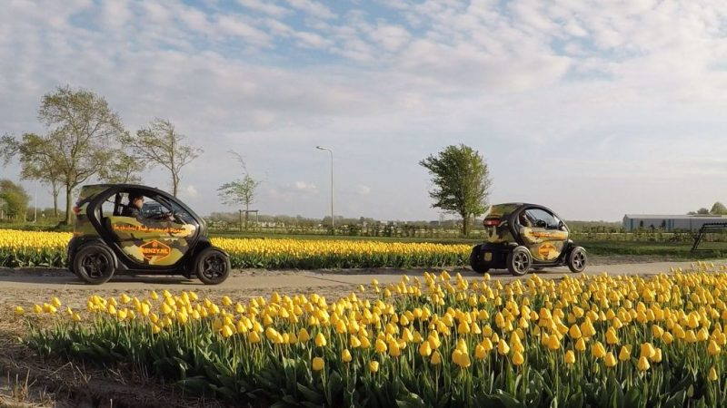Electric Twizy tour tulip fields