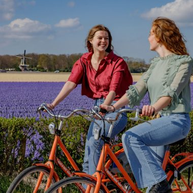 Tulip Bike Experience