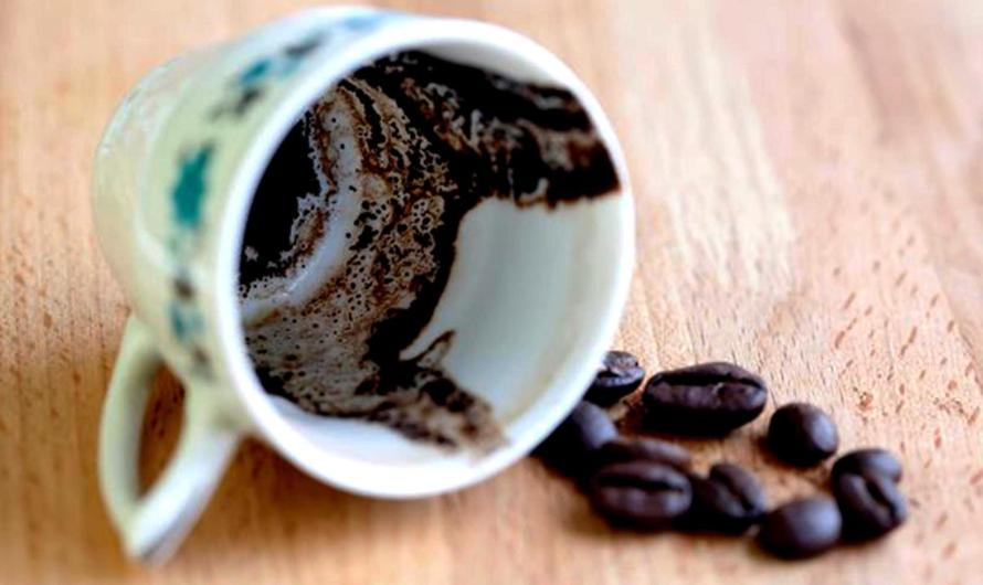 How to Use Coffee Leaves for Plant Fertility