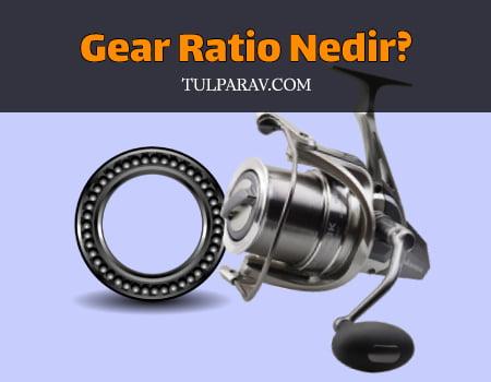 Gear Ratio Nedir?