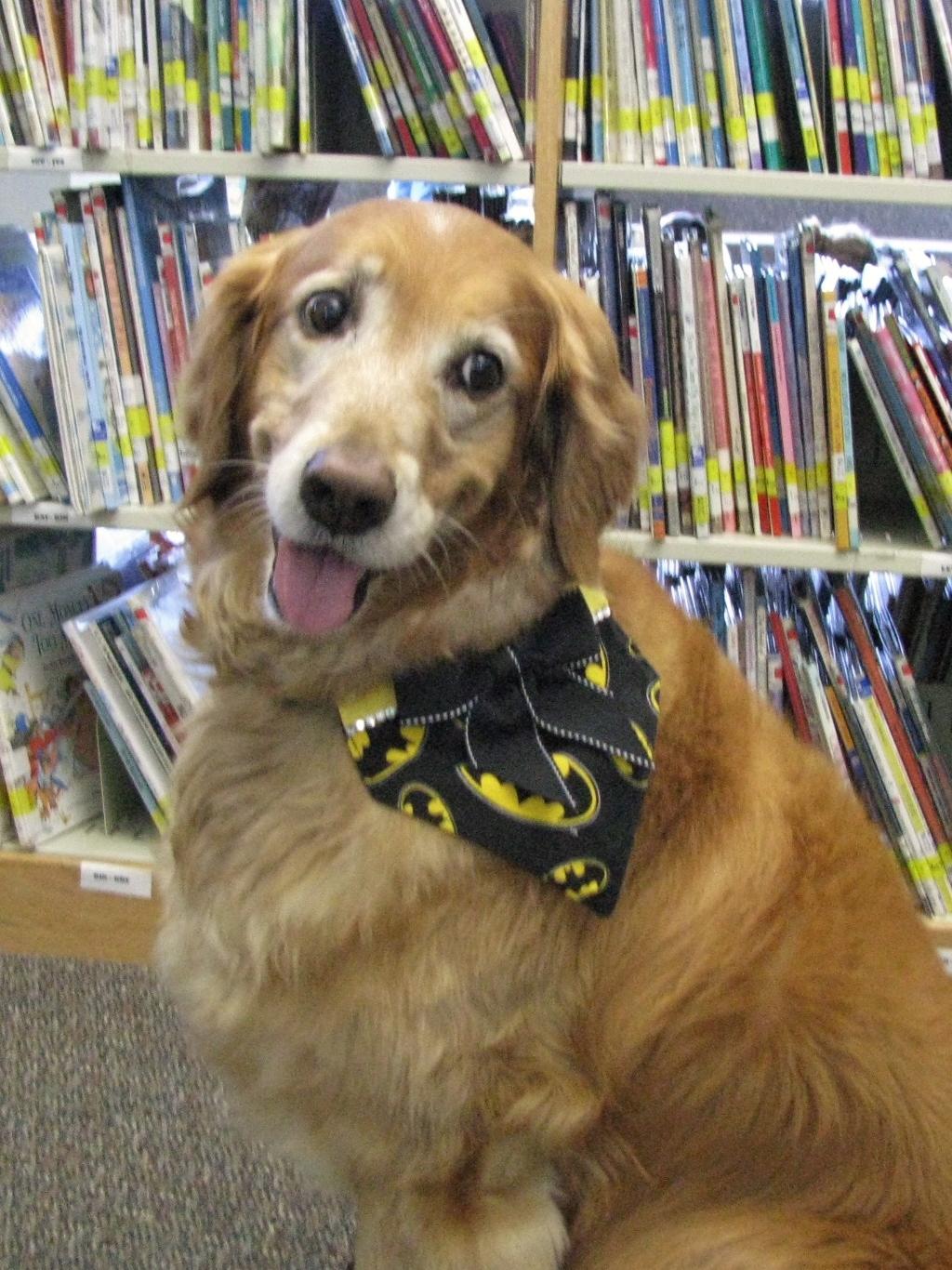 Paw Pals Visits Tulsa Dog Training Club