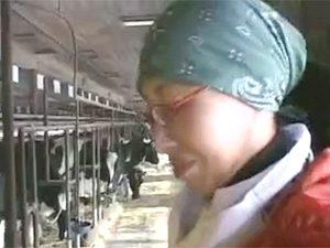 岩手の牧場で酪農を営む55歳の美人熟女が逆に乳搾られるAV応募ですごいセックスを披露する!