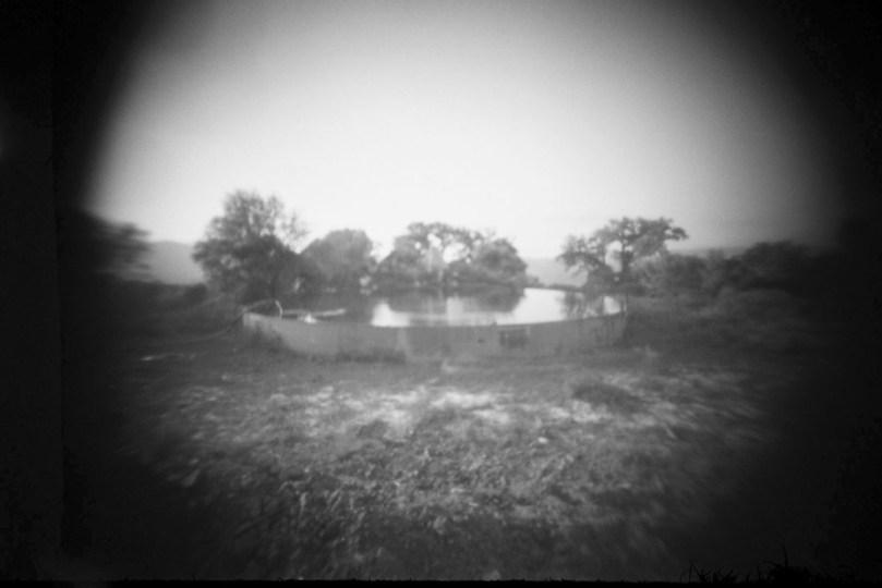 Tumba común, de Cristóbal Polo - Estenopógrafo #10
