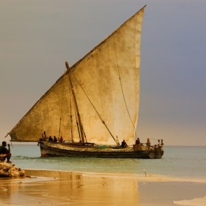 Zanzibar dhow vieillot 2
