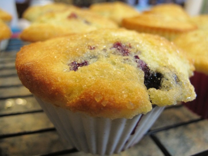 Gluten dairy free muffins with extra virgin olive oil