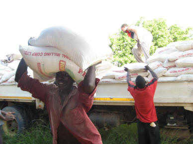 GBM Milling Sues Base Ltd Over Debt from Mealie Meal Supplies