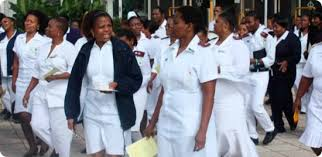 GNCZ release nurses, midwives December 2019 licensure results
