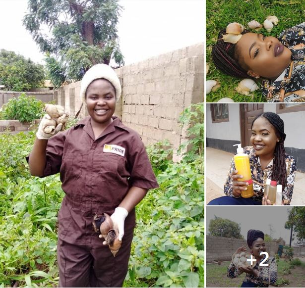 YOUNG ZAMBIAN SNAIL FARMER HARVESTS OVER 1 MILLION SNAILS YEARLY