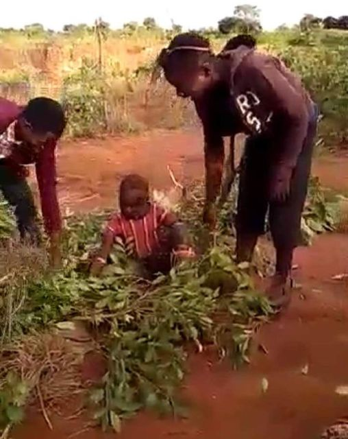 Police Explain Video Of Boy Tied And Left Alone In The Bush