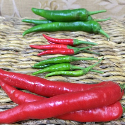 From top: green chillies, red chilli padi, green chilli padi, red chillies. The smaller chillies (chilli padi) are much hotter than the regular-sized chillies!