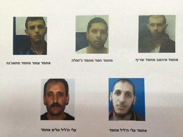 israeli tards for islamic state