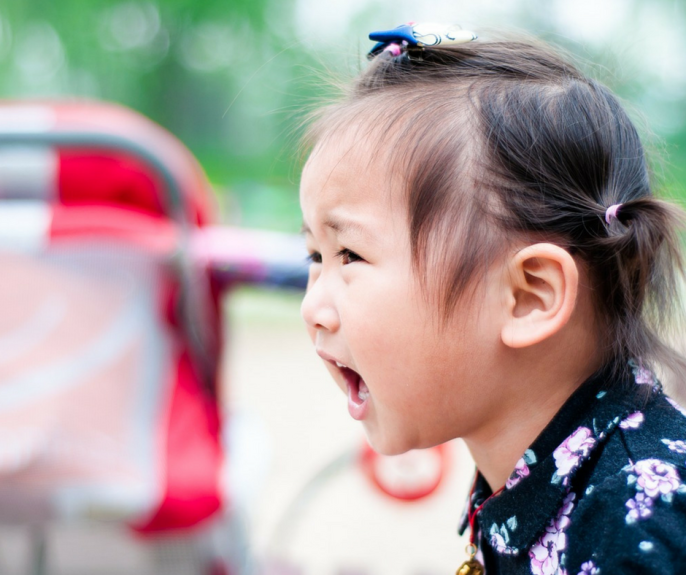 My Toddler Is Having a Meltdown: 4 Tips to Avoid Tantrums