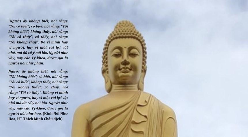 """""""Thấy Biết"""" Trong Lời Dạy Của Đức Phật"""
