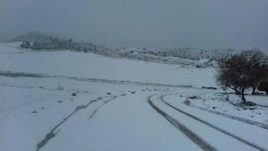 Photo of بسبب تساقط الثلوج // تواصل انقطاع حركة المرور بعدد من الطرقات بهذه الولايات