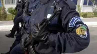 Photo of الأمن الجزائري يرحّل مذيعة تونسية بعد احتجازها ساعات