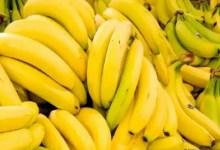Photo of قريبا… قرار حازم ضد كبار موردي وموزعي الموز