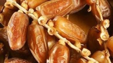 Photo of هذه أسعار التمور خلال شهر رمضان..